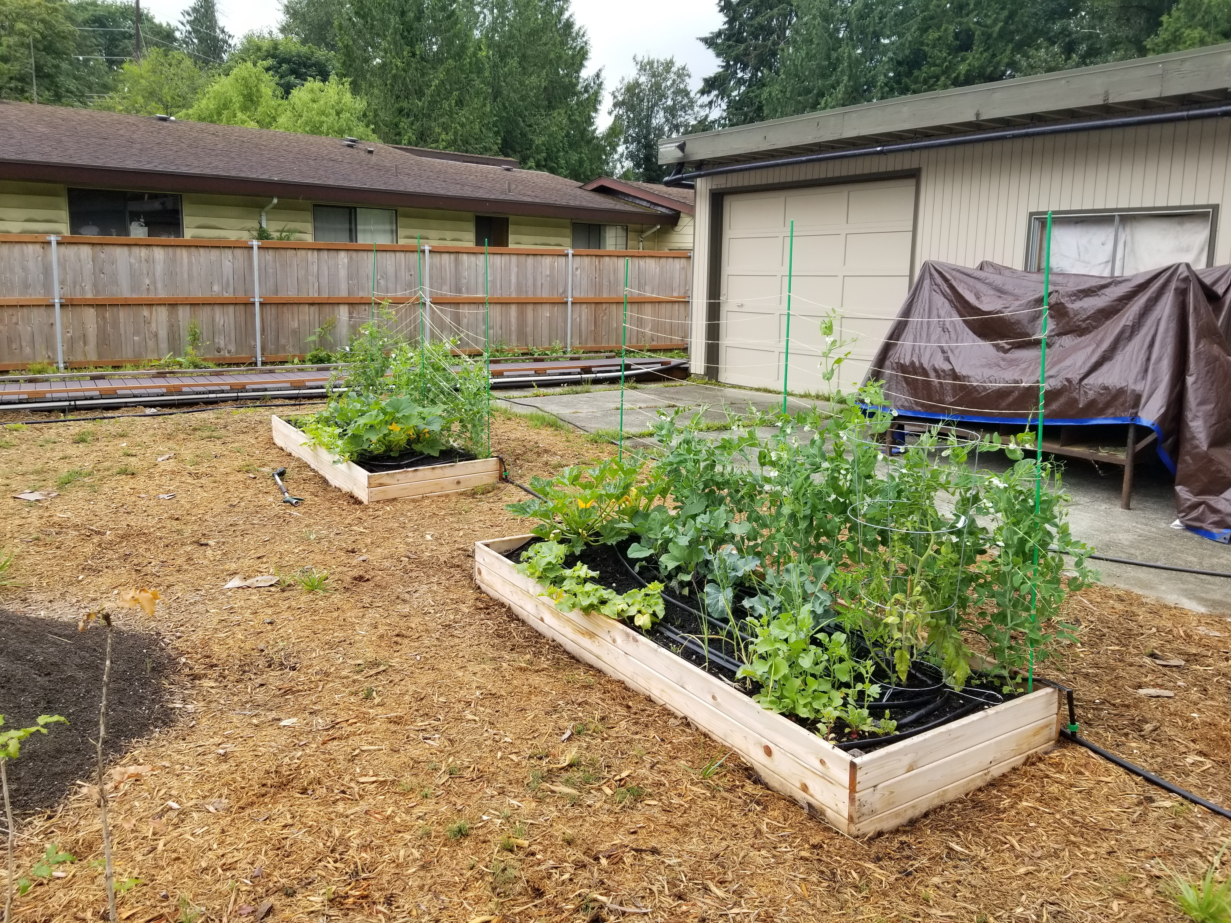 Urban Agriculture Example
